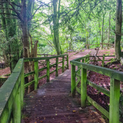 Footpath from the bridge by Brian Challis