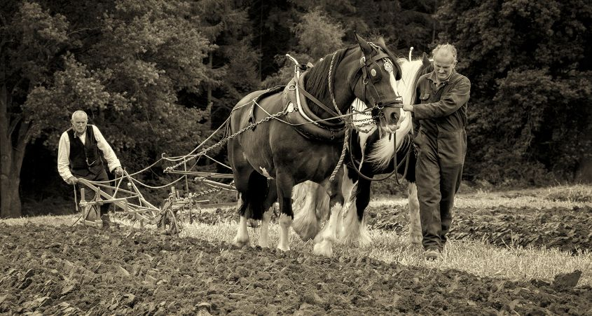 Keeping Tradition Alive by Keith Sharples