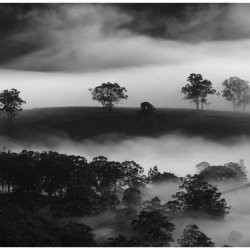 Mist in the Valleyby Tony Cutting