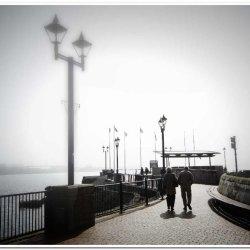 Misty Stroll by Chris Morris