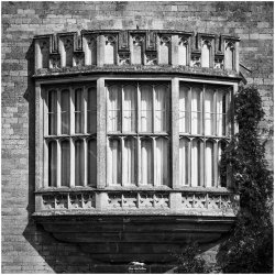 Not That Window by Iain McCallum