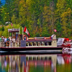 Paddle Steamer by Tony Cutting