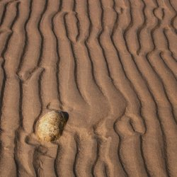Pebble in the Sand