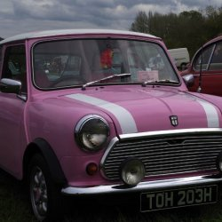 Pink Mini Sharon Thomas