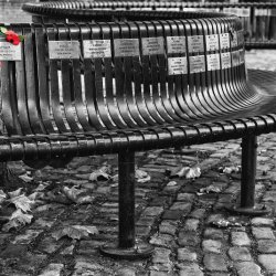 Seat of Memories by Lyn Sharples