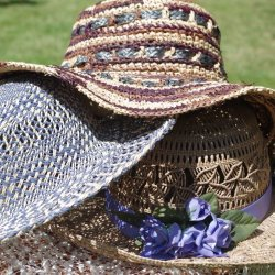 Three Summer Hats by Sharon Thomas