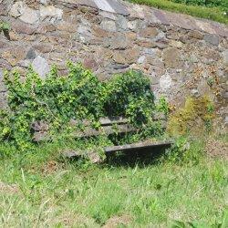 Totnes Bench