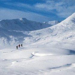 Walking in a Winter Wonderland by Lyn Sharples