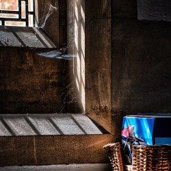 Window Light by Keith Sharples