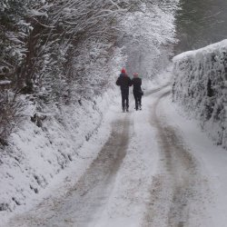 walkers in the snow