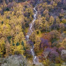 Sourmilk Gill in autumn. Buttermere, Lake District, Cumbria. UK