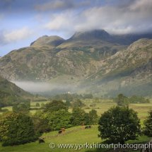 Misty Langdale, Lake District, Cumbria, UK