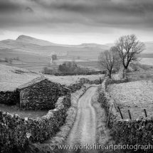 Goat Lane monochrome.  Stainforth, Yorkshire Dales UK