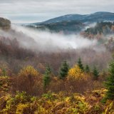 Misty Day on the Dukes Pass, Aberfoyle