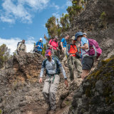 Trekking on Kilimanjaro