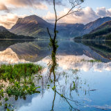 LoneTree at Buttermere