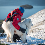 Mountain Rescue Dog and Handler