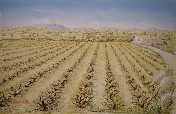 Fields near Moriara.