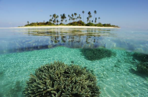 Coral Island, The Maldives
