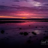 11-Crosby beach 26 July Sunset and Night 1-9159