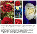 Fiori Flowers, Nantwich.