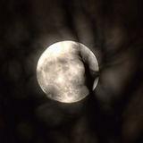Peek a boo moon