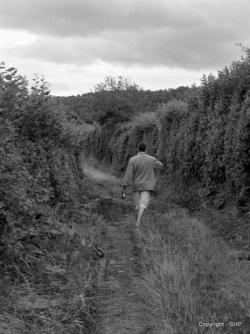 The muddy path