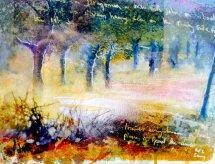 """""""Dragonara"""" Olive trees, Mallorca"""
