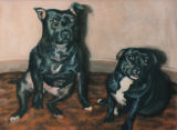 Porgy and Bess the Staffordshire Terriers