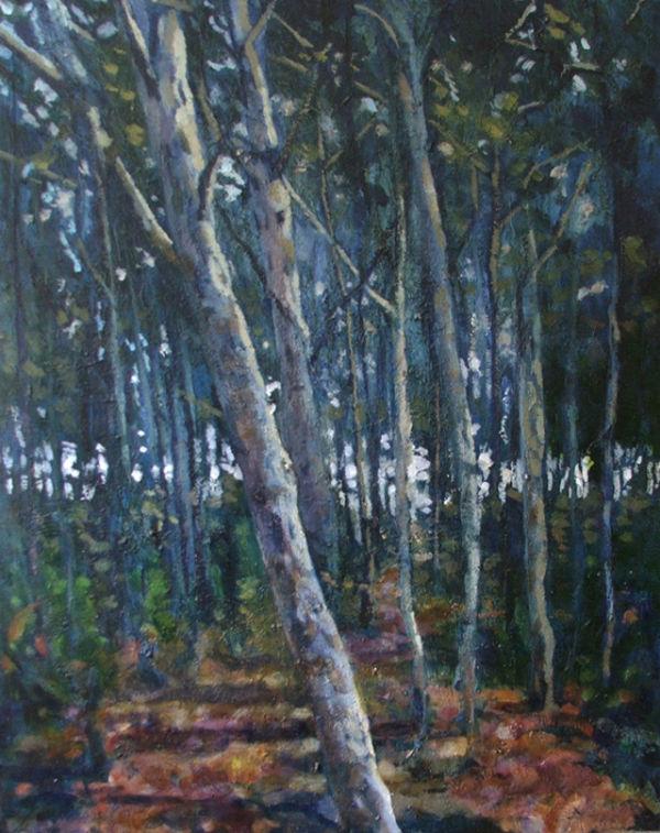Woods edge