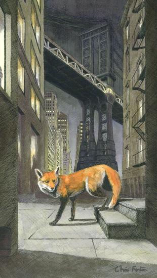2019 - City Fox