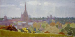"'Norwich skyline' 6""x 12"" oil on board"