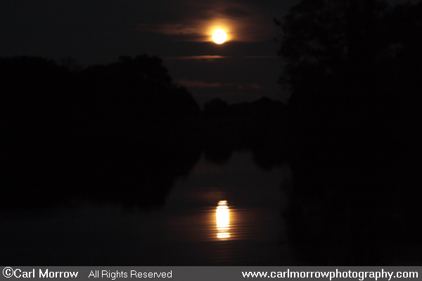 Moonlit Lake
