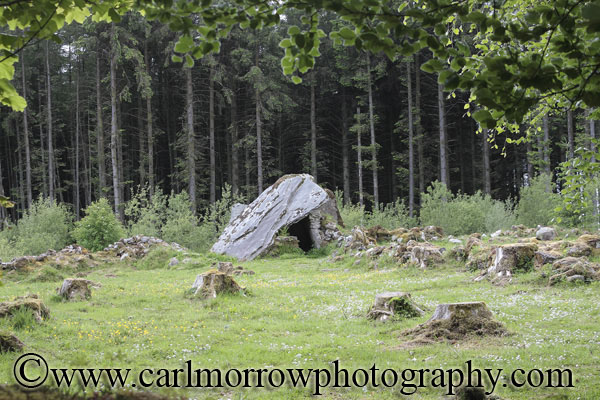 Wedge Tomb, County Cavan, Ireland.