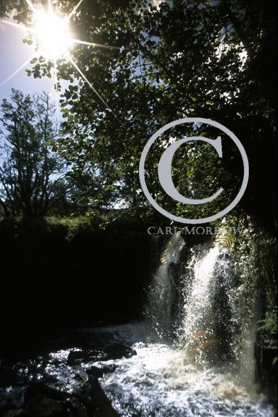 Tullydermot Waterfalls, County Cavan, Ireland.