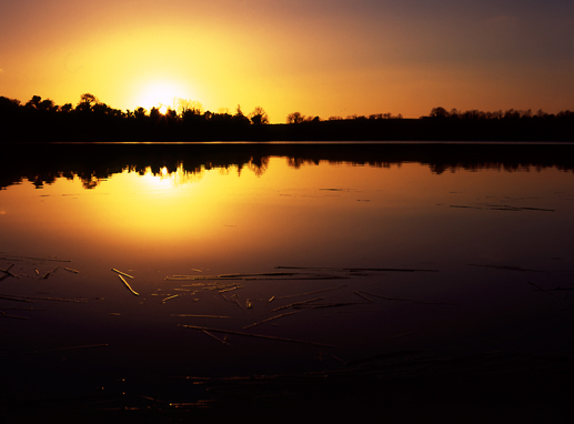 Arden Lake