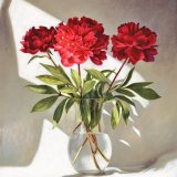 Peonies -  Limited Edition Print