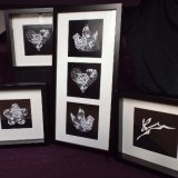 Examples of framed Photograms