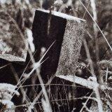 Highgate Cross - Split Sepia/Selenium Toned