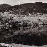 Reflected Landscape, Llyn Dinas - Selenium Toned