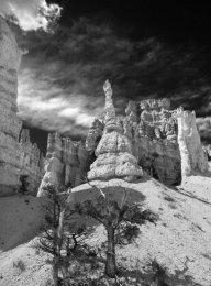 Bryce Canyon (II)