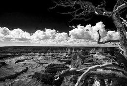 Grand Canyon (I)