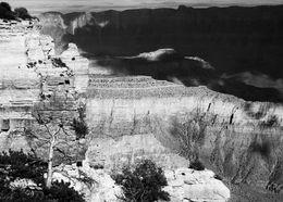 Grand Canyon (III)