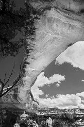 Natural Bridges National Monument (II)