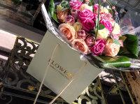 Rose Frenzy (large)