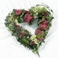 Modern Open Heart