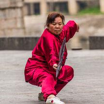Fan Tai Chi