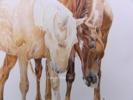 """Friends"" 12""x16"" Coloured Pencil (Mounted size 40x50cm) £95"
