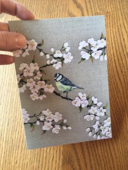 Blue Tit and Blossom Greetings Card 175mm x 120mm
