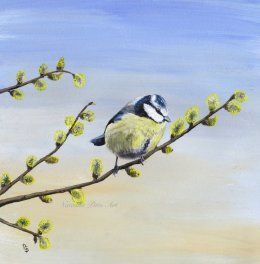 Blue Tit in Pussy Willow Original Painting £36.99 unframed Prints available